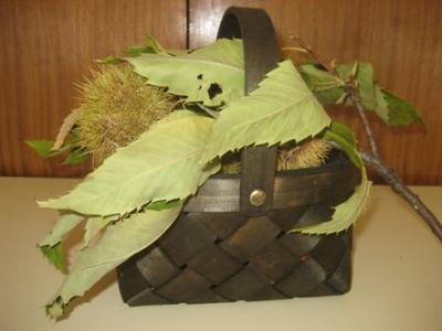 Una cesta con castañas