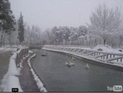 Vídeos de la nevada.....