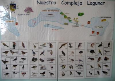 Paisajes: Complejo Lagunar Alcázar de San Juan