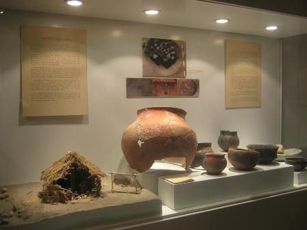 Una musa en el Museo